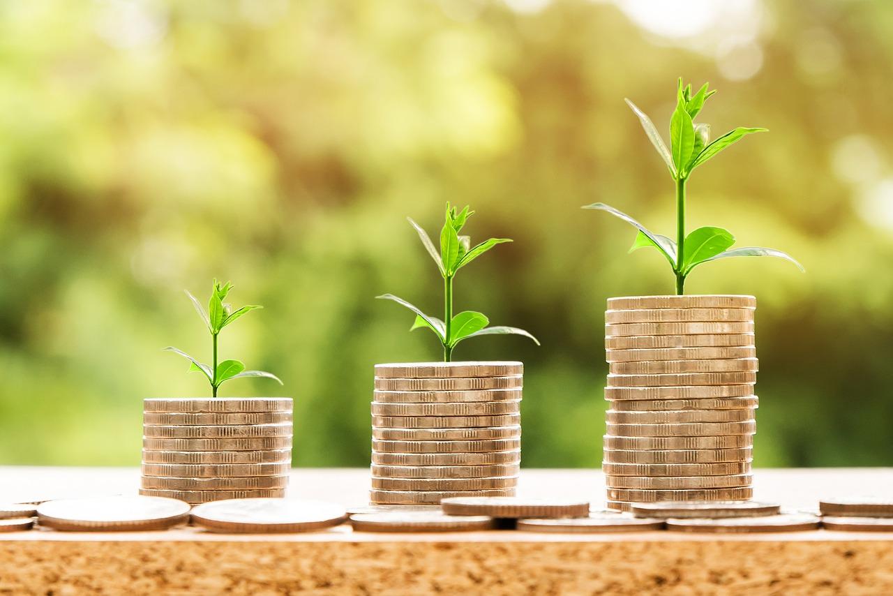 Financial Capability Audits